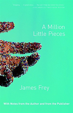 Bild på A Million Little Pieces