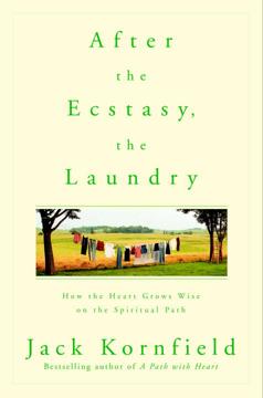 Bild på After the Ecstasy, the Laundry