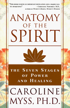 Bild på Anatomy of the Spirit