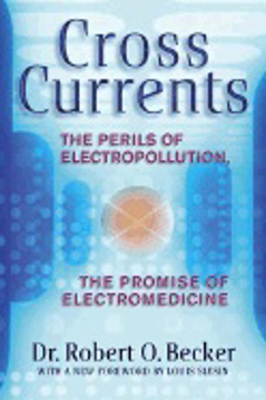 Bild på Cross Currents: The Perils Of Electropollution, The Promise