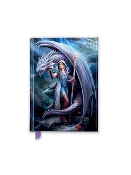 Bild på Dragon Mage Pocket Diary 2020