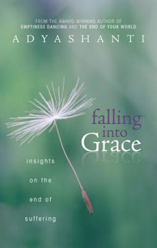 Bild på Falling into grace - insights on the end of suffering