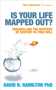 Bild på Is your life mapped out? - unravelling the mystery of destiny vs free will