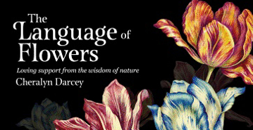 Bild på Language Of Flowers - Mini Inspiration Cards