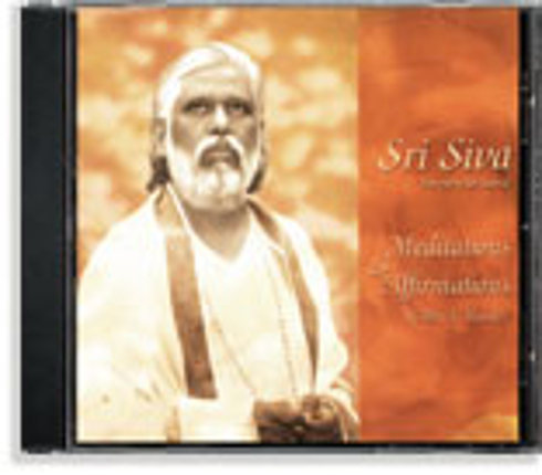 Bild på Meditations and Affirmations with a Master