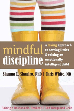 Bild på Mindful discipline - a loving approach to setting limits and raising an emo