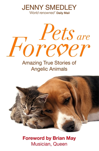 Bild på Pets are forever - amazing true stories of angelic animals