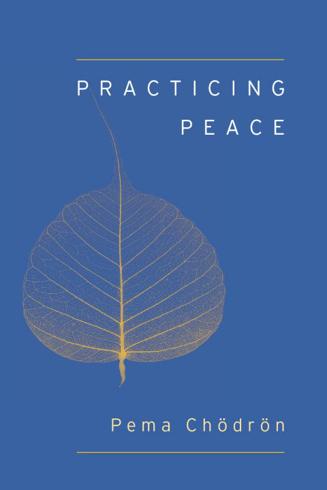Bild på Practicing peace (shambhala pocket classic)