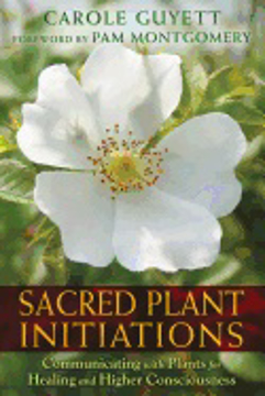 Bild på Sacred plant initiations - communicating with plants for healing and higher