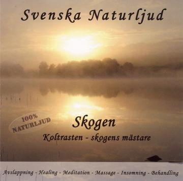 Bild på Skogen : Koltrasten – skogens mästare (Svenska naturljud)