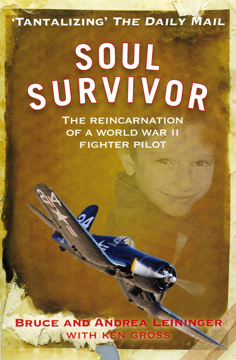 Bild på Soul survivor - the reincarnation of a world war ii fighter pilot