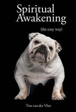 Bild på Spiritual awakening - (the easy way)