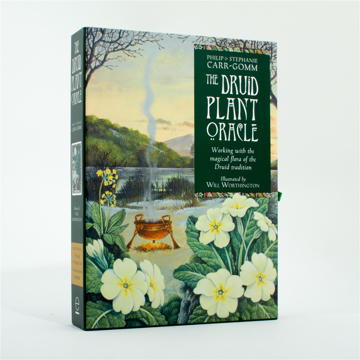 Bild på The Druid Plant Oracle: Working with the Magical Flora of the Druid Tradition