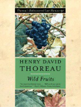 Bild på Wild Fruits: Thoreau's Rediscovered Last Manuscript (Q)