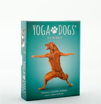 Bild på Yoga Dogs Deck & Book Set