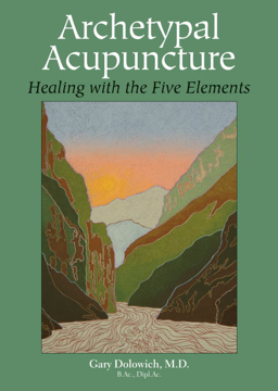 Bild på Archetypal Acupuncture