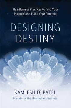 Bild på Designing Destiny